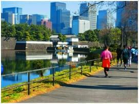 彦根藩邸跡より桜田門を臨む