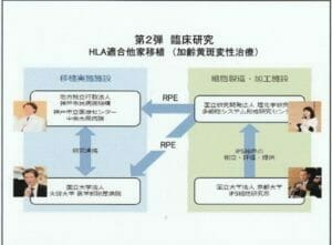 臨床研究の組織関係図