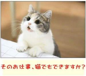 そのお仕事、猫でもできますか?