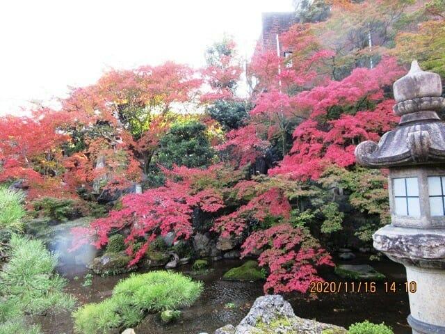 がんこ寿司二条苑の庭