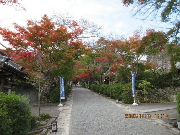 明智光秀ゆかりの地、坂本にある西教寺